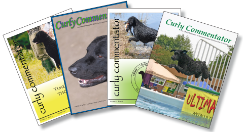 Issue covers of the Curly Commentator